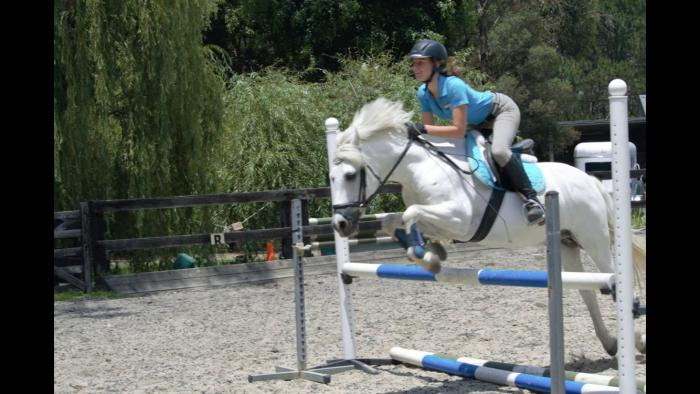 Talented Performance Pony