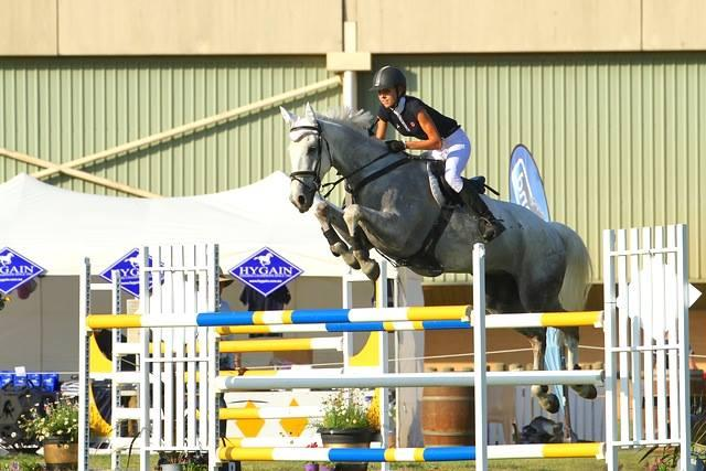 Outstanding and easy showjumper