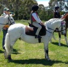 Super leadrein/beginnner pony