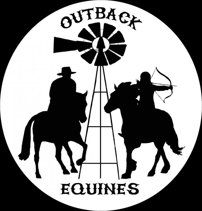 Online Horse Training Videos