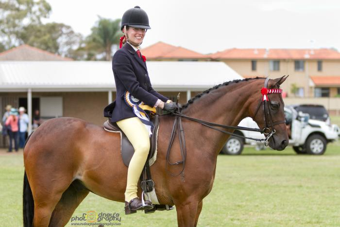 Royal Show Pony-  Winner Bathurst Royal- Price Neg