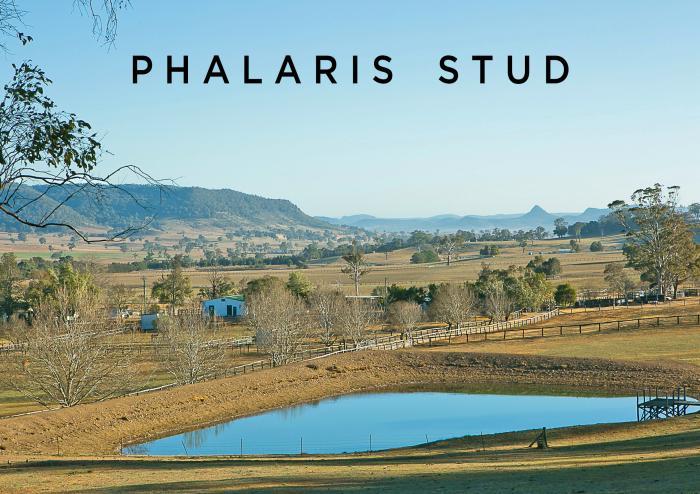'Phalaris Stud' Glen Alice Rd, Rylstone