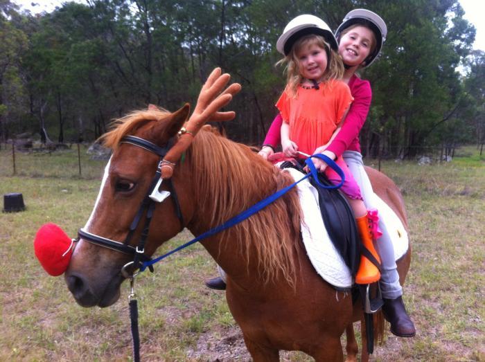 Pony Club Specialist