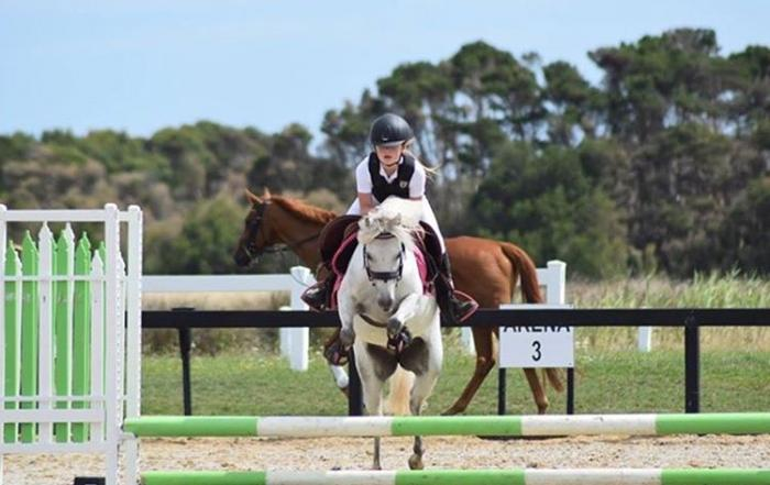 ultimate Pony Club, Games or showjumping pony