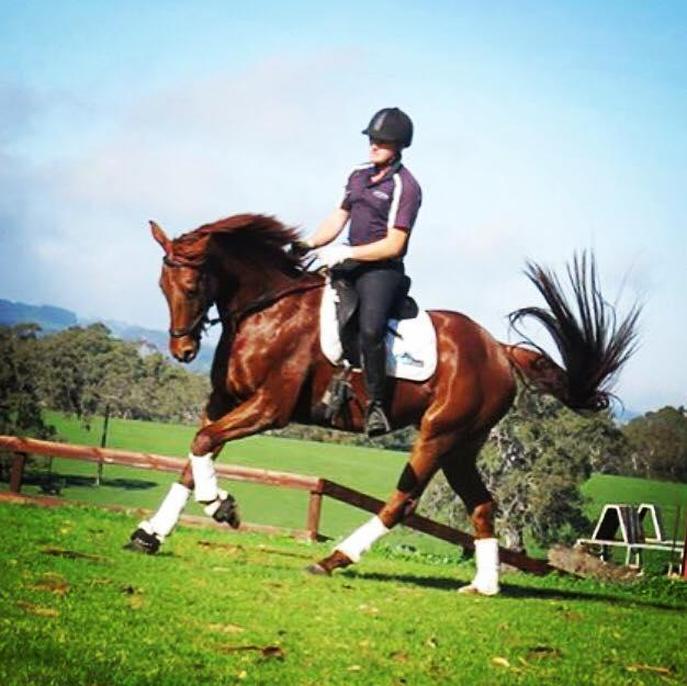 Incredible Eventing Potential