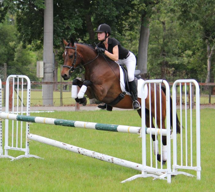 PRICE REDUCED - Talented jumping pony