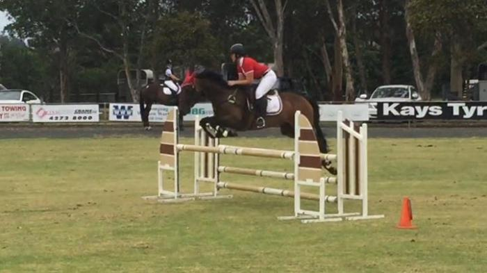 Junior/Young Rider/Amatuer Fun Reliable Showjumper