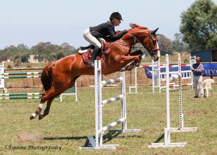 Competitive Up & Coming Grand Prix Mare