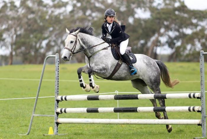 A Junior Show Jumping Mare