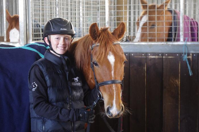 13'3h Australian Riding Pony x New Forest