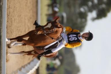 mentone horsetrials