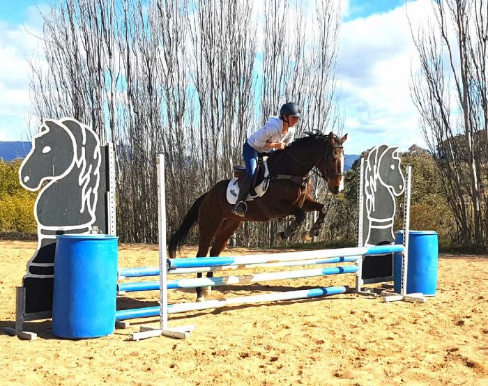 Perfect Interschools mount