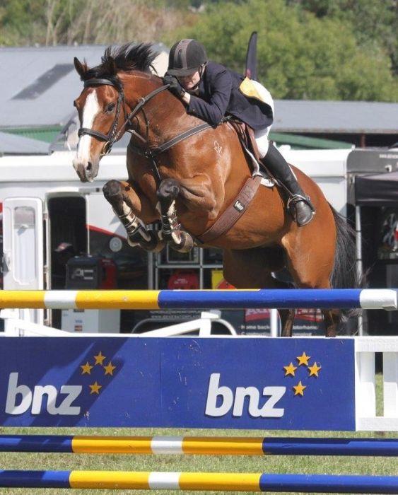 www.qualitynzhorses.com PRESENTS Amateur 1.30m SJr