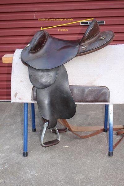 Roma Saddlery Swinging Fender