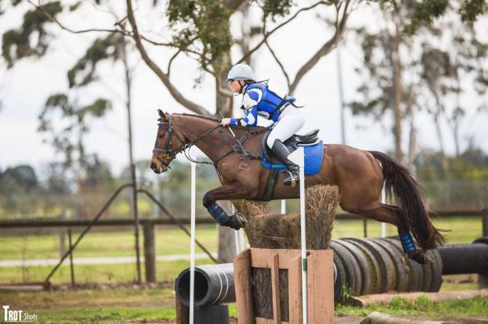 Enthusiastic Eventer/All Rounder