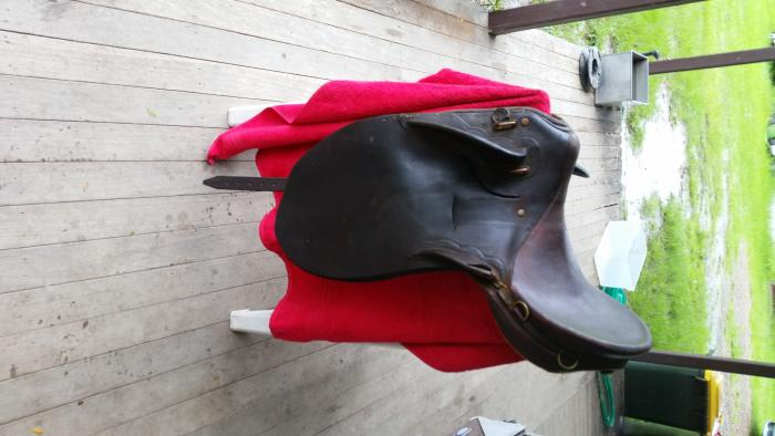 Aussie Youths stock saddle