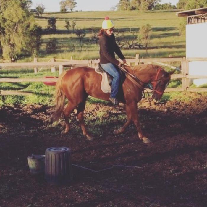 Eye catching, quiet OTT mare