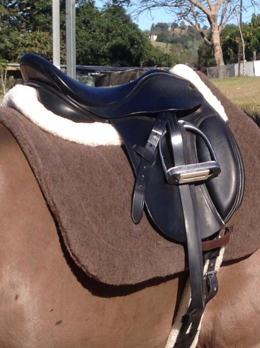 Stunning Lucardie Show Saddle