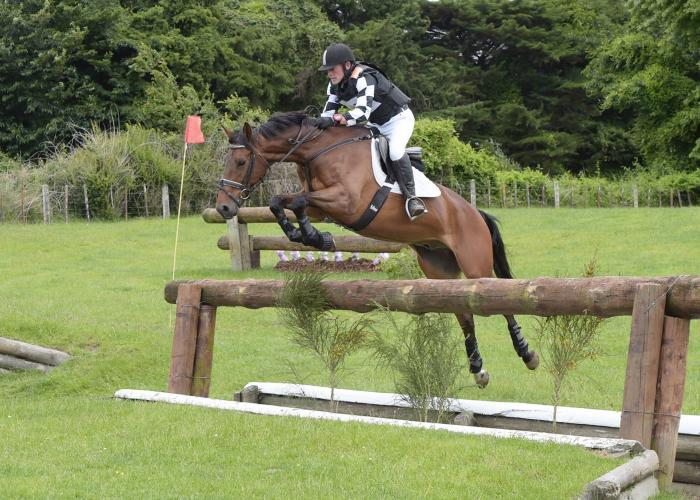 Seriously Talented Eventer