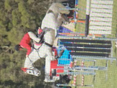 Show jumping 1.25 course