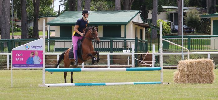 Pretty Sporting Pony