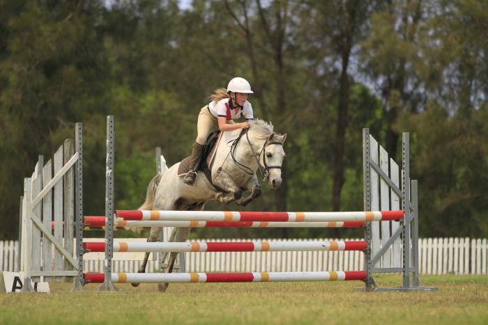 Super Allround Pony