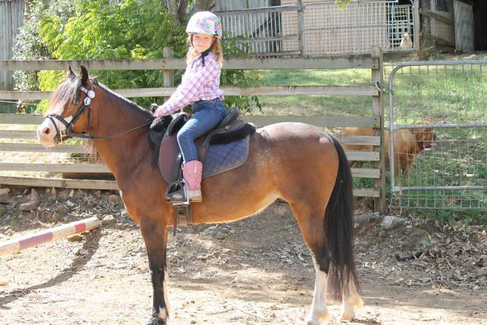 Lead Rein,first ridden Pony