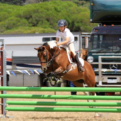 """RIPPLE"" Experienced Pony Club Interschool Mount"