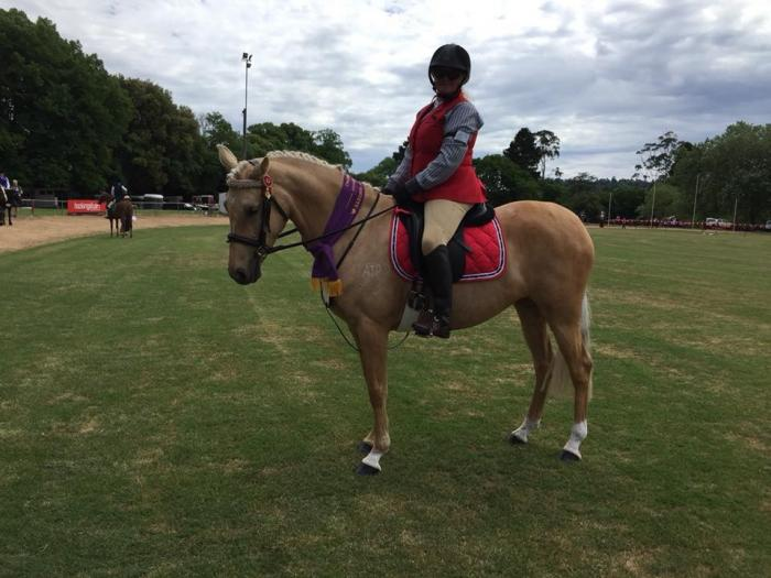 Derivative mare  5yo