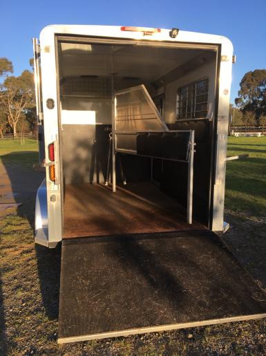Spacious, Lined Horse Accommodation