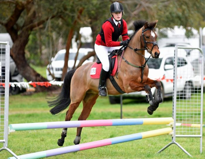 Outstanding riding pony