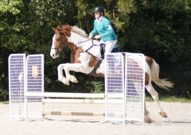 First show jumping comp