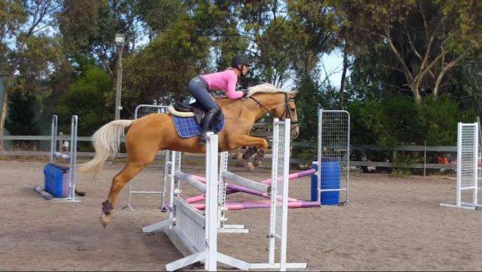 Vivacious, Performance Pony