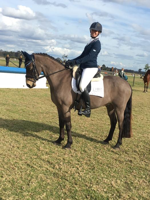 Winning Dressage Pony with FEI potential