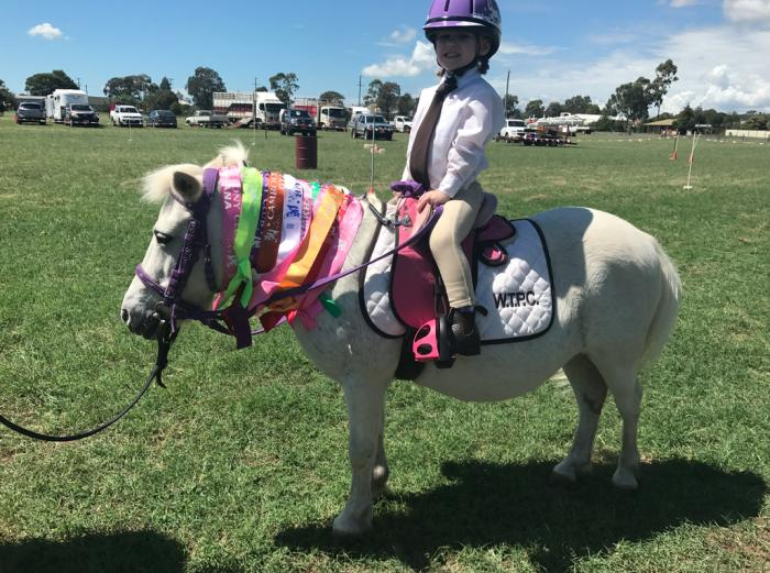 Mimi - The perfect first pony