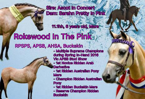 Rokewood In The Pink