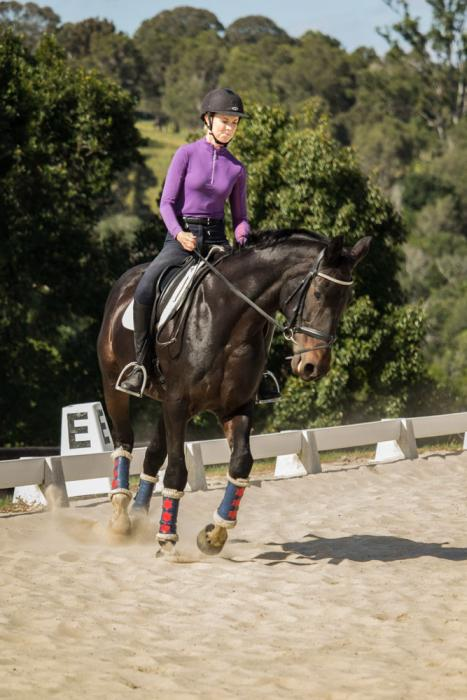 Talented Mare by River Dance