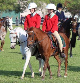 Pair of Ponies