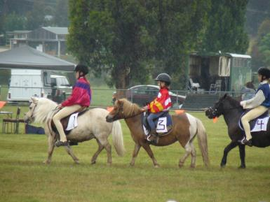 The Shetland Derby