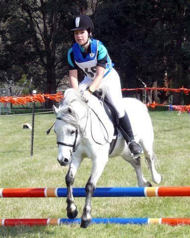 Spirit.  Hunter type pony
