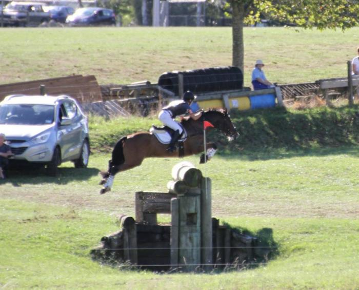 WOW - INCREDIBLE 2*EVENTING PONY