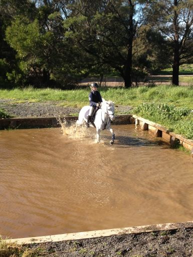 Mornington Horse trials water jump coaching session