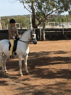 Silver Lining - negotiable as rider has new horse!