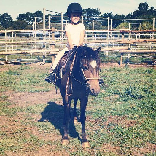 Dream beginners pony