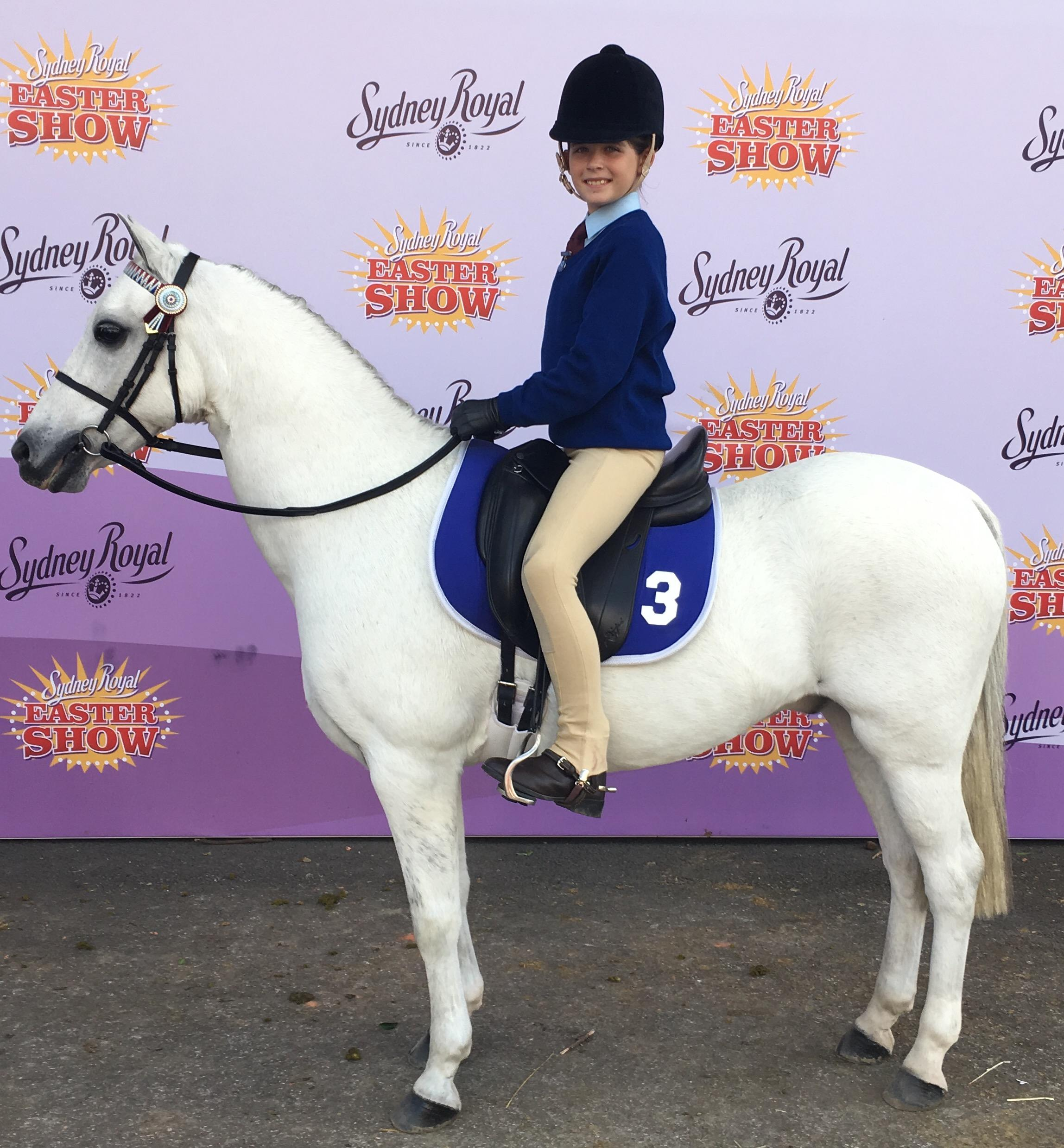 Ultimate Pony Club Pony