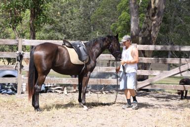 Here's my saddle