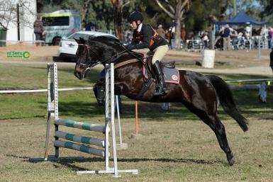 2015 Warialda NSW State Showjumping Championships