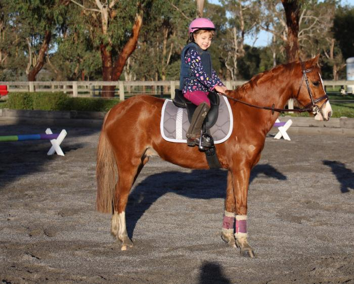 Super cute child's show all rounder leading rein