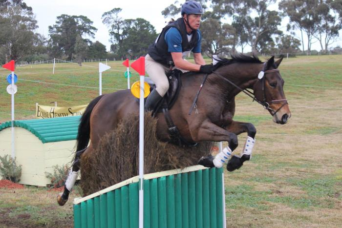 Talented, Honest 1* Eventer; superb temperament