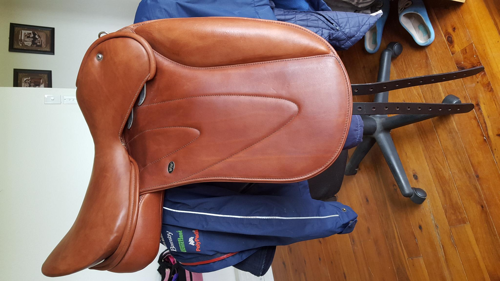 Wow competitor dressage saddle
